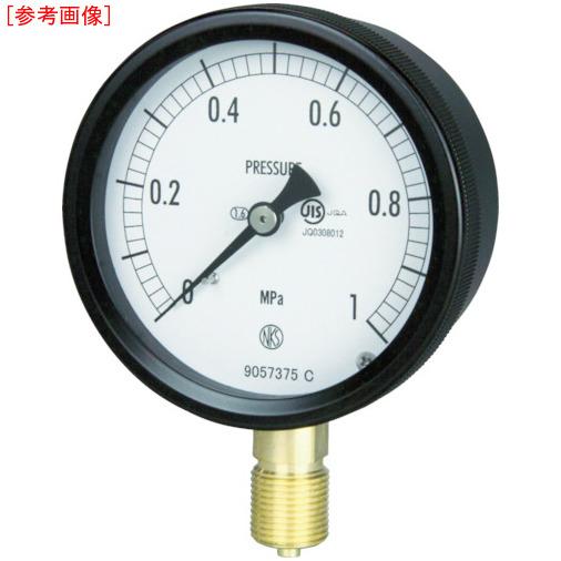 長野計器 長野 密閉形圧力計 BC10-131-6.0MP BC10-131-6.0MP