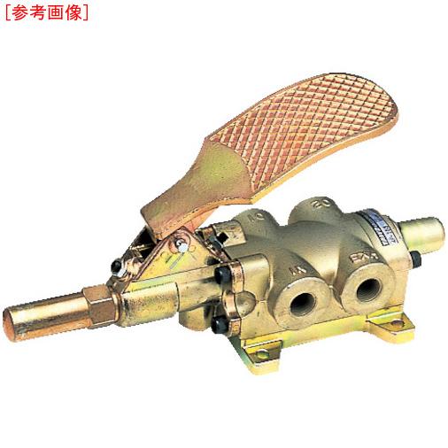 TAIYO TAIYO フートバルブ 1/4 4F-20