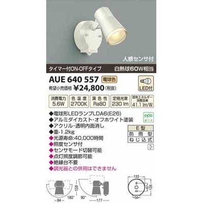 コイズミ LED防雨型スポット AUE640557
