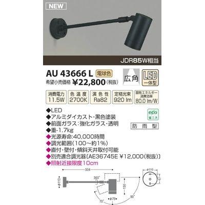 コイズミ LED防雨型スポット AU43666L