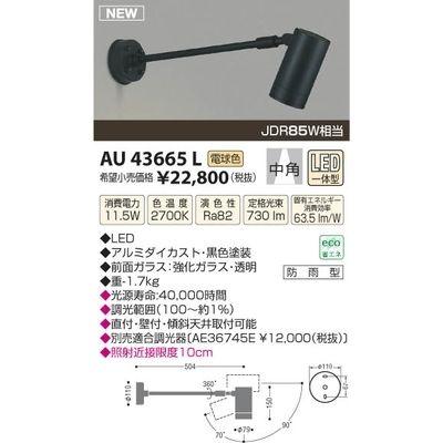 コイズミ LED防雨型スポット AU43665L