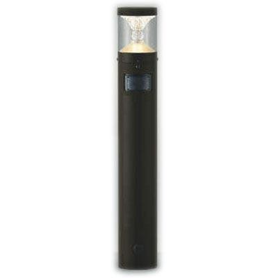 コイズミ ガーデンライト AU45498L