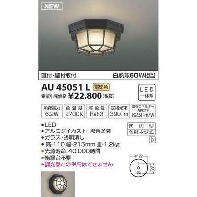 コイズミ 防雨型シーリング(電球色LED) AU45051L