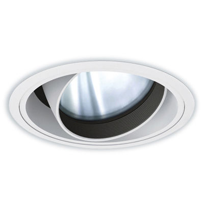 遠藤照明 LEDZ ARCHI series ユニバーサルダウンライト ERD4476W-S