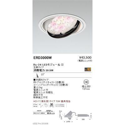 遠藤照明 LEDZ Rs series 生鮮食品用照明(ユニバーサルダウンライト) ERD3000W