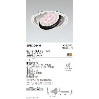 遠藤照明 LEDZ Rs series 生鮮食品用照明(ユニバーサルダウンライト) ERD3004W