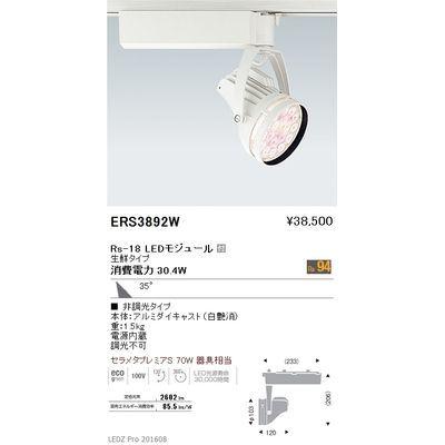 遠藤照明 LEDZ Rs series 生鮮食品用照明(スポットライト) ERS3892W
