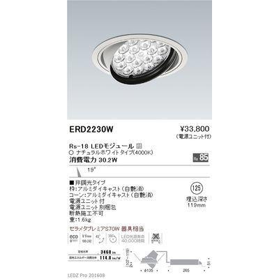 遠藤照明 LEDZ Rs series ユニバーサルダウンライト ERD2230W