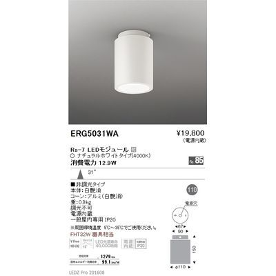 遠藤照明 LEDZ HIGH-BAY series シーリングダウンライト ERG5031WA