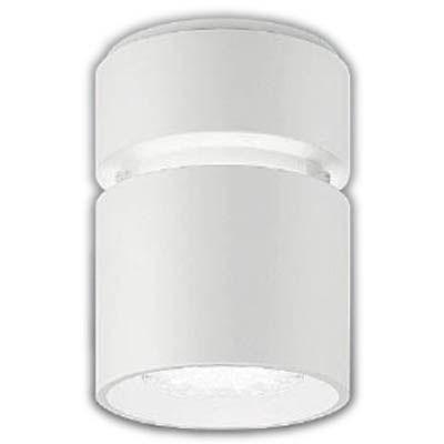 遠藤照明 LEDZ HIGH-BAY series シーリングダウンライト ERG5089W