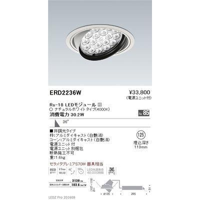 遠藤照明 LEDZ Rs series ユニバーサルダウンライト ERD2236W