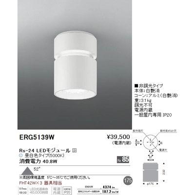 遠藤照明 LEDZ HIGH-BAY series シーリングダウンライト ERG5139W
