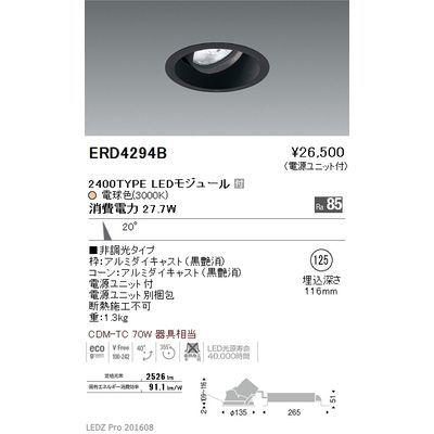 遠藤照明 LEDZ ARCHI series ユニバーサルダウンライト ERD4294B