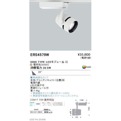 遠藤照明 LEDZ ARCHI series スポットライト ERS4579W