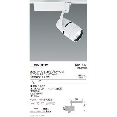 遠藤照明 LEDZ ARCHI series スポットライト ERS5131W
