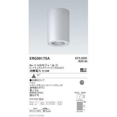 遠藤照明 STYLISH LEDZ series 軒下用シーリングダウンライト ERG5017SA