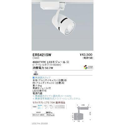 遠藤照明 LEDZ ARCHI series ウォールウォッシャースポットライト ERS4215W