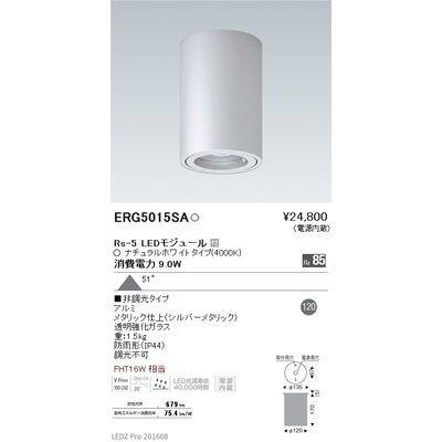 遠藤照明 STYLISH LEDZ series 軒下用シーリングダウンライト ERG5015SA