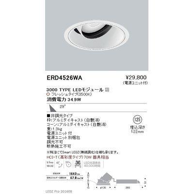 遠藤照明 LEDZ ARCHI series 生鮮食品用照明(ユニバーサルダウンライト) ERD4526WA