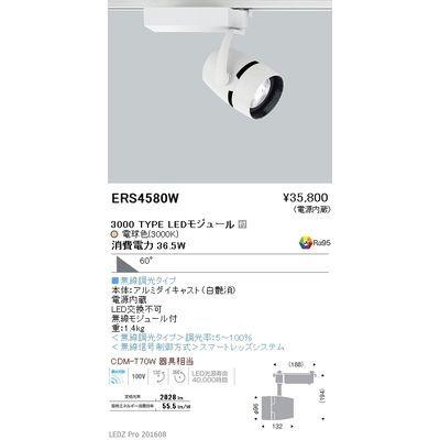 遠藤照明 LEDZ ARCHI series スポットライト ERS4580W