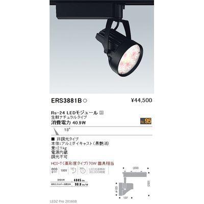 遠藤照明 LEDZ Rs series 生鮮食品用照明(スポットライト) ERS3881B