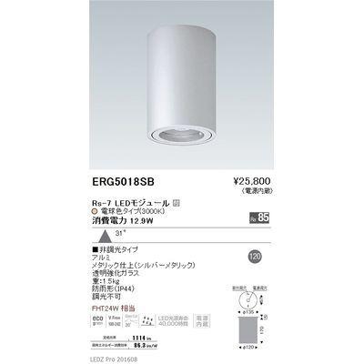 遠藤照明 STYLISH LEDZ series 軒下用シーリングダウンライト ERG5018SB