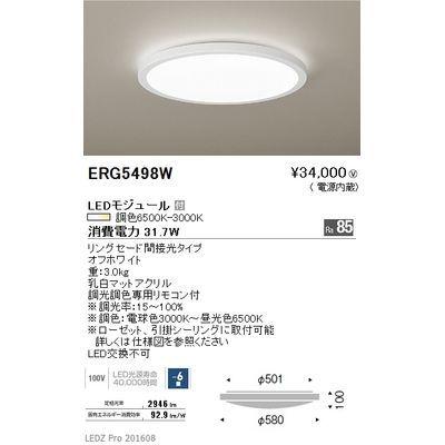 遠藤照明 LEDZ 調光調色シリーズ 調光調色シーリングライト ERG5498W