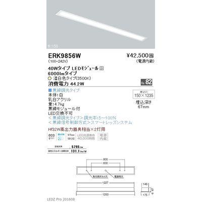 遠藤照明 LEDZ FLAT BASE series ベースライト 下面乳白パネル形 ERK9856W