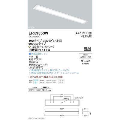 遠藤照明 LEDZ FLAT BASE series ベースライト 下面乳白パネル形 ERK9853W