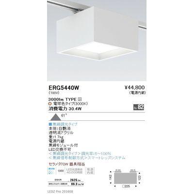 遠藤照明 LEDZ HIGH-BAY series/LEDZ Mid Power series スクエアシーリングライト(プラグタイプ) ERG5440W