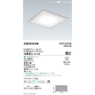遠藤照明 LEDZ Mid Power series フラットベースミニ ERK9443W