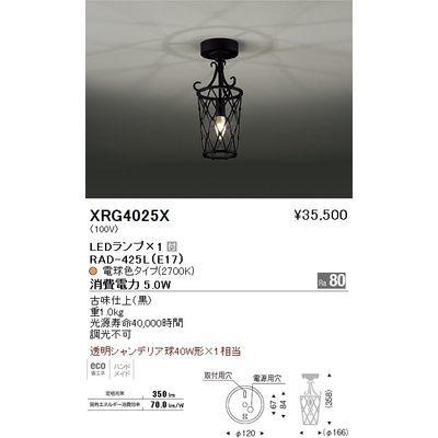 遠藤照明 シーリングライト〈LEDランプ付〉 XRG4025X