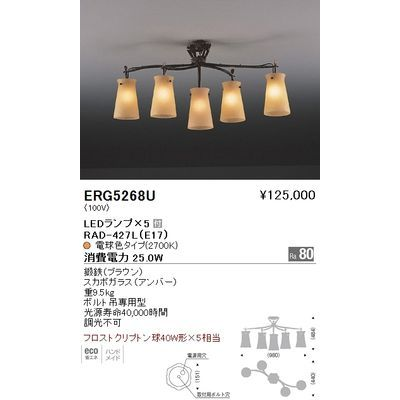 遠藤照明 シーリングライト〈LEDランプ付〉 ERG5268U