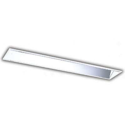 東芝 直管ランプシステム黒板灯 LER-41091-LS9