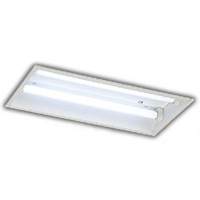 東芝 直管ランプシステム埋込2灯 LER-22540-LD9