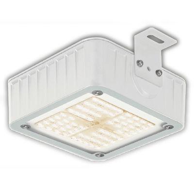 東芝 LED屋外器具高天井(防湿・防雨) LEDJ-10913L-LJ2