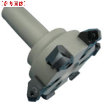 富士元工業 富士元 ナイスカット 6枚刃 φ100 Sタイプ NKN32100S06