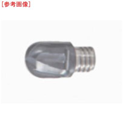 タンガロイ 【2個セット】タンガロイ ソリッドエンドミル COAT VBB100L10.0-BM-