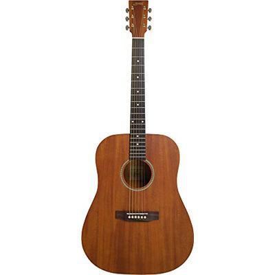 SYAIRI 【6個セット】YD-04 MH アコースティックギター ソフトケース付き 4534853044110