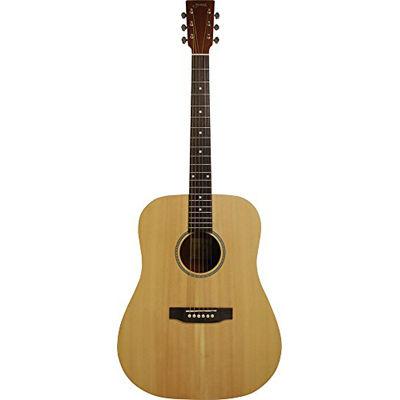 SYAIRI 【6個セット】Limited Series アコースティックギター YD-04/NTL ナチュラル ソフトケース付属 4534853044219