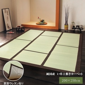 その他 純国産/日本製 い草カーペット い草マット 『F蔵』 ブラウン 約200×250cm 裏:ウレタン張り コンパクト収納可 ds-783350