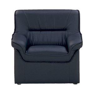 その他 アイコ 応接椅子 アームチェア ds-1098511