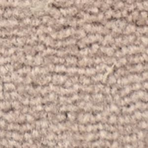 その他 サンゲツカーペット サンビクトリア 色番VT-6 サイズ 200cm×300cm 【防ダニ】 【日本製】 ds-1287978