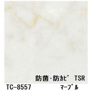 その他 抗菌・防カビ仕様の粘着付き化粧シート マーブル サンゲツ リアテック TC-8557 122cm巾×4m巻【日本製】 ds-1503179