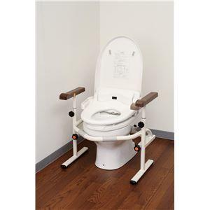 その他 パナソニックエイジフリーライフテック トイレ用手すり 洋式トイレ用スライド手すり(ステンレス) PN-L53001 ds-1550742