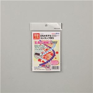 その他 (まとめ)アーテック DNAストラップ作り 【×30セット】 ds-1563750