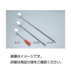 その他 (まとめ)検査鏡 SL-02【×10セット】 ds-1594997