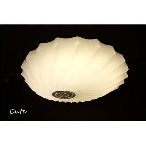 その他 シーリングライト(照明器具) LEDタイプ/4000ルーメン 自然光色 〔リビング照明/ダイニング照明〕【電球付き】【代引不可】 ds-1677283