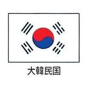その他 エクスラン万国旗70×105 YJN6901