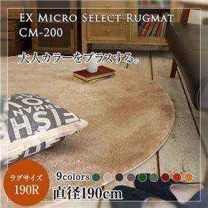 その他 レトロモダン マイクロセレクトラグマット(CM200) 190cm正円 レンガ ds-1853900